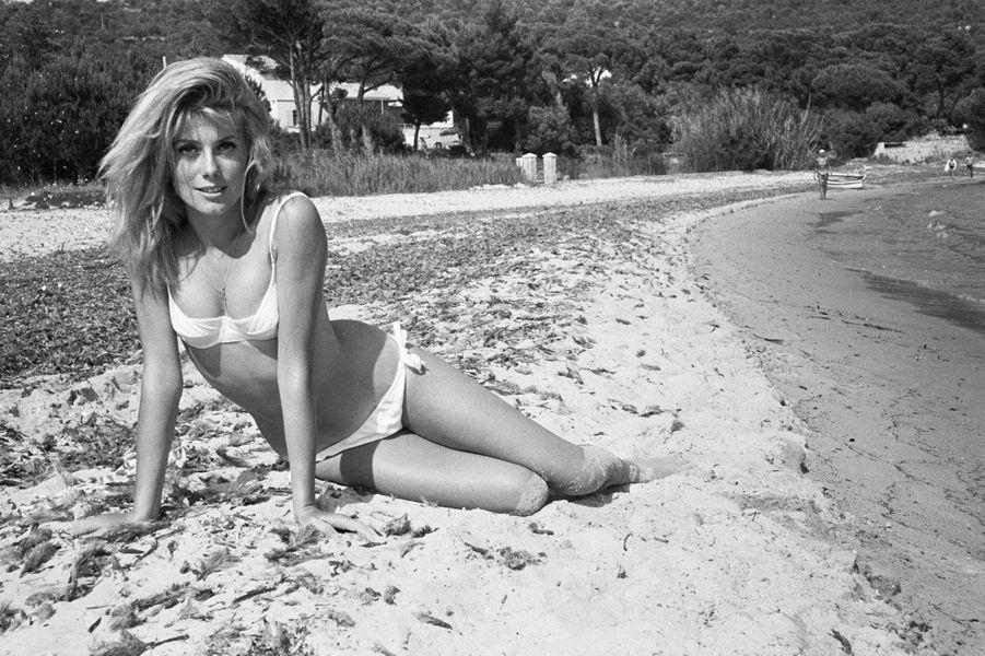 Catherine Deneuve en bikini